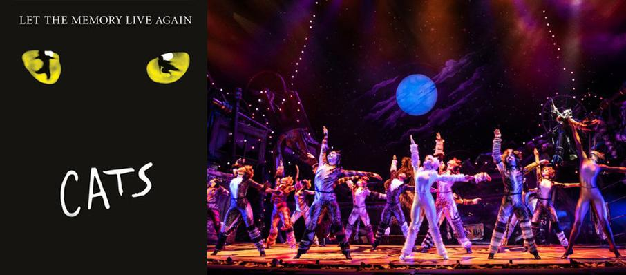 Cats at Kimberly-Clark Theatre